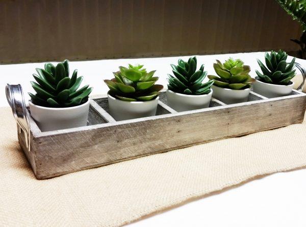 bandeja portavelas multiple cactus 1942x1440