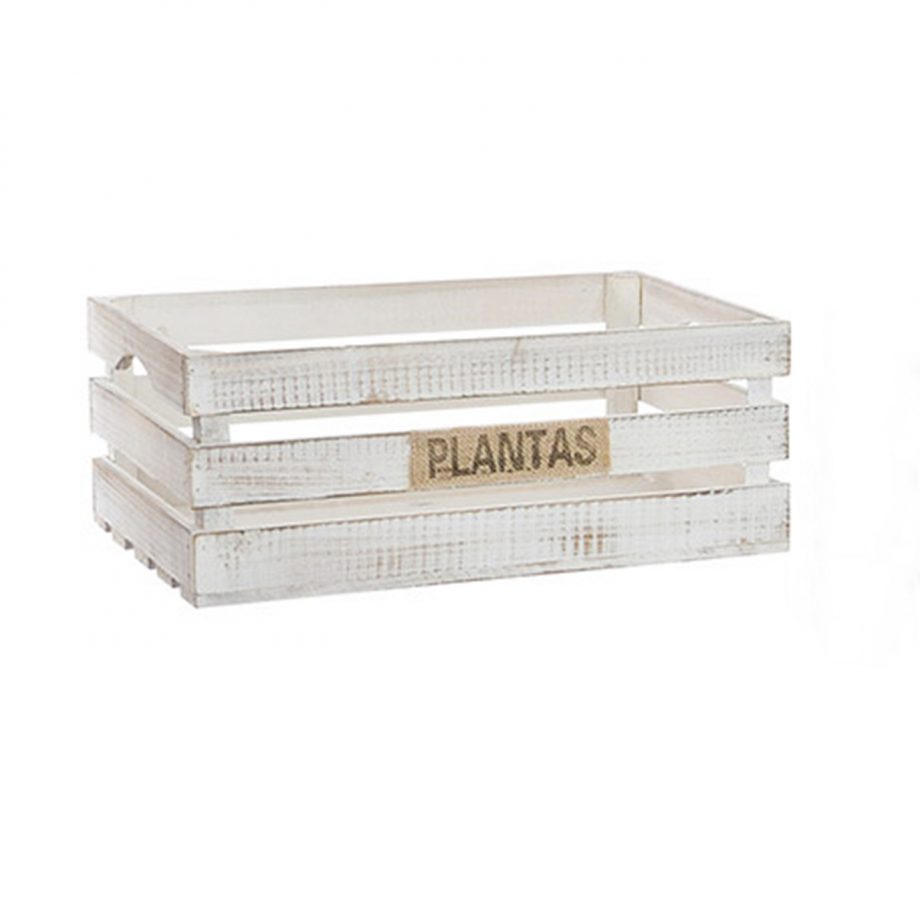 caja contenedor plantas 1440x1440