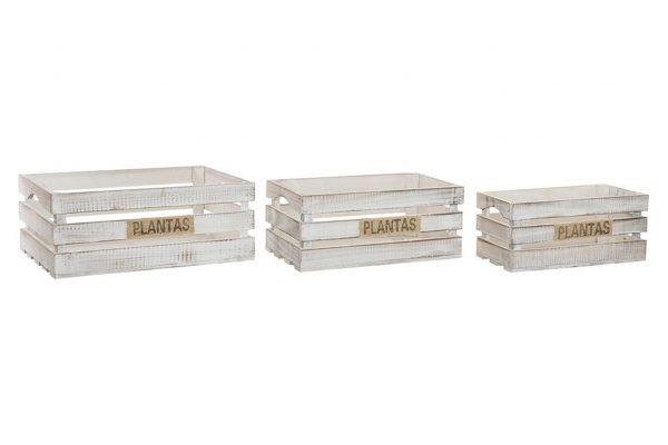 caja contenedor plantas set 1942x1440