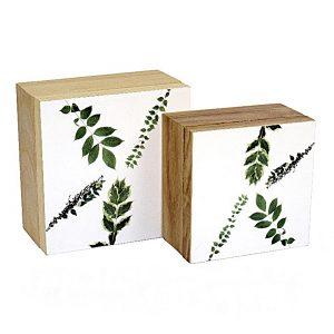 caja tapa hojas set 1440x1440