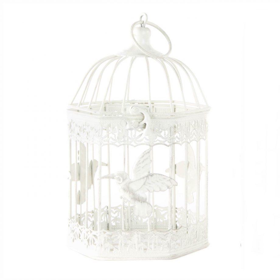 jaula blanca 1440x1440